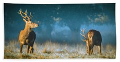 Two Stags Hand Towel