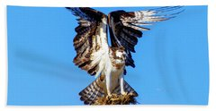 Two  Talons Full Hand Towel