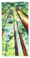 Up Through The Redwoods Hand Towel