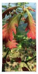 Velvet New Oak Leaves Hand Towel