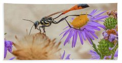 Wasp At White Sands Hand Towel