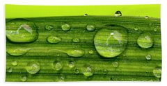 Water Drops On Leaf Hand Towel