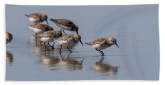 Western Sandpipers And Reflection Bath Towel