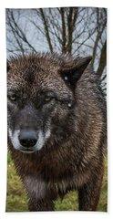 Wet Wolf Hand Towel