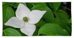 White Dogwood Flower  Hand Towel