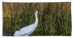 Whooping Crane In Pond Hand Towel