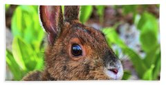 Wild Rabbit Hand Towel