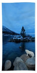 Winter Nightlife Hand Towel