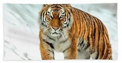 Bath Towel featuring the painting Winter Tiger by Harry Warrick