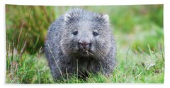 Wombat Bath Towel