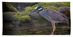 Yellow-crowned Night Heron Bath Towel