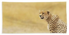 Young Adult Cheetah Banner Hand Towel