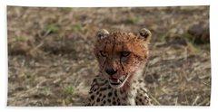 Young Cheetah Bath Towel