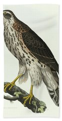 Young Goshawk Bath Towel