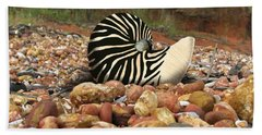 Zebra Nautilus Shell On Bauxite Beach Hand Towel