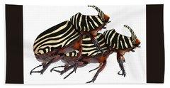 Zebra Pattern Rhinoceros Beetle 2 Hand Towel