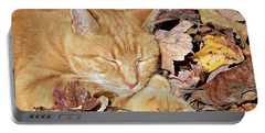 Portable Battery Charger featuring the photograph  Autumn Dreaming by Susan Leggett