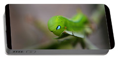 Portable Battery Charger featuring the photograph  Caterpillar by Michelle Meenawong