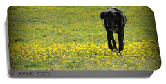 Cody In Black And Yellow Portable Battery Charger