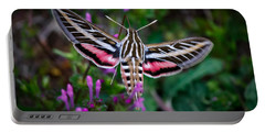 Hummingbird Moth Print Portable Battery Charger