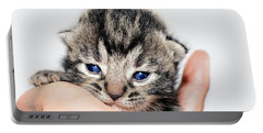 Portable Battery Charger featuring the photograph  Kitten In A Hand by Susan Leggett