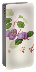 La Royale Plum Portable Battery Charger