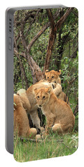 Masai Mara Lion Cubs Portable Battery Charger