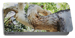 Sycamore Tree's Twisted Trunk Portable Battery Charger by Tom Janca