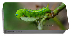 Portable Battery Charger featuring the photograph  Wet Caterpillar by Michelle Meenawong