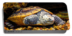 Sea Turtle Portable Battery Charger by Savannah Gibbs