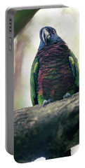 A St. Lucia Parrot. Edmund Forest Portable Battery Charger