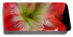 Amaryllis Portable Battery Charger by Ron Davidson