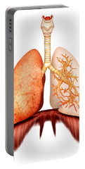 Anatomy Of Human Respiratory System Portable Battery Charger