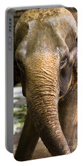 Asian Elephant Portable Battery Charger