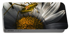 Australian Grasshopper On Flowers. Spring Concept Portable Battery Charger by Jorgo Photography - Wall Art Gallery