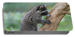 Baby Raccoon Portable Battery Charger by M. Watson