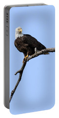 Bald Eagle 7 Portable Battery Charger