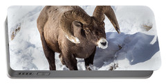 Bighorn Sheep Portable Battery Charger