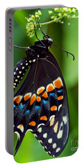 Black Swollowtail  Portable Battery Charger