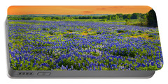 Bluebonnet Sunset  Portable Battery Charger
