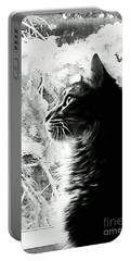Portable Battery Charger featuring the photograph Bo by Jacqueline McReynolds