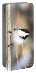 Black Capped Cutie Portable Battery Charger by Heather King