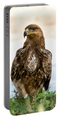 Close-up Of A Tawny Eagle Aquila Rapax Portable Battery Charger