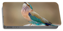 Close-up Of An Indian Roller Coracias Portable Battery Charger