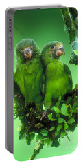 Cobalt-winged Parakeets Portable Battery Charger by Art Wolfe