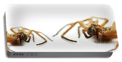 David And Goliath Daddy Longlegs Portable Battery Charger by Jorgo Photography - Wall Art Gallery