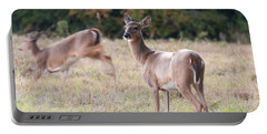 Deer At Paynes Prairie Portable Battery Charger