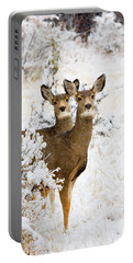 Doe Mule Deer In Snow Portable Battery Charger