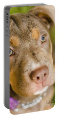 Dog Obedience Training Portable Battery Charger