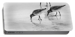 Dunlin Trio Bw Portable Battery Charger